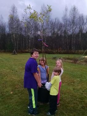 Wolcott orchard day