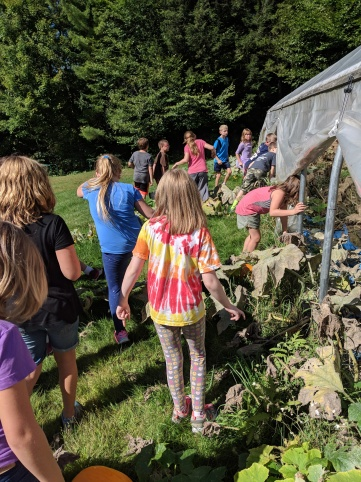 Third graders return to the greenhouse.
